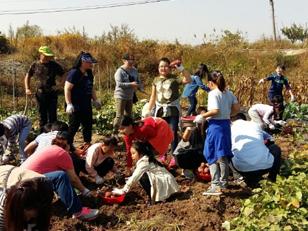우리 아이들의 꿈, 농촌힐링캠프 이루어진다.